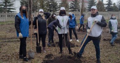 Волонтеры Победы приняли участие в Международной акции «Сад Памяти»