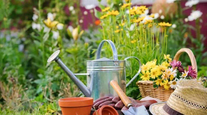В Башкортостане принят закон о господдержке садоводов